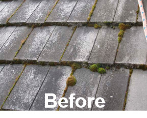Our Techniques Are Totally Effective In Removing Moss, Mildew And Fungus On  Roof Surfaces For Cleaning And Maintenance Of Tile Roofs, And Asphalt  Shingle ...